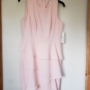 NWT Eliza J Petite Shift Dress Sz 8